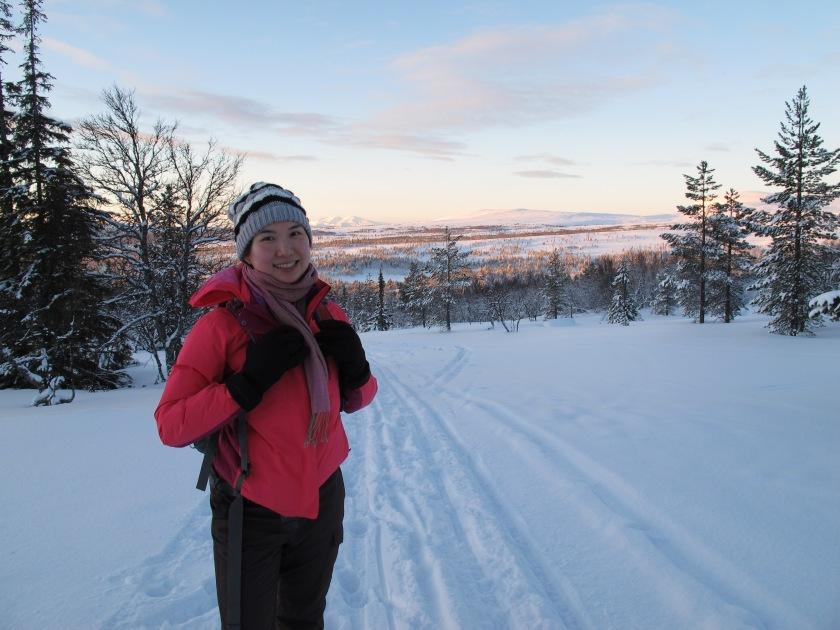 在小雪山丘上回望山腳的森林