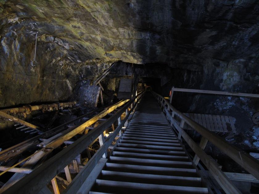 洞內狹長的木梯