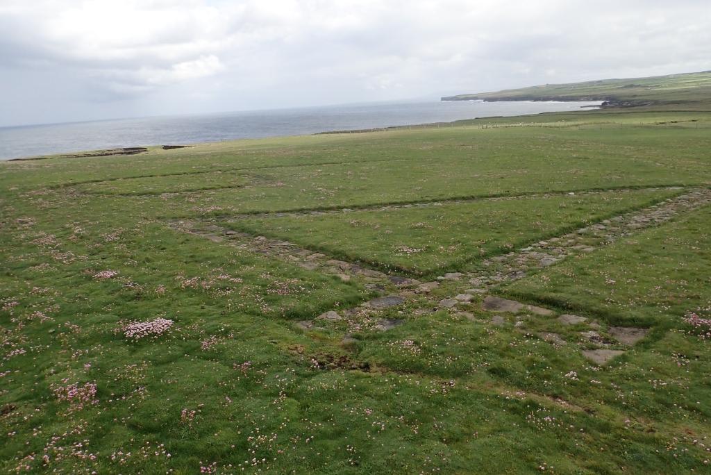 平平的草地上,刻有EIRE 64的字眼