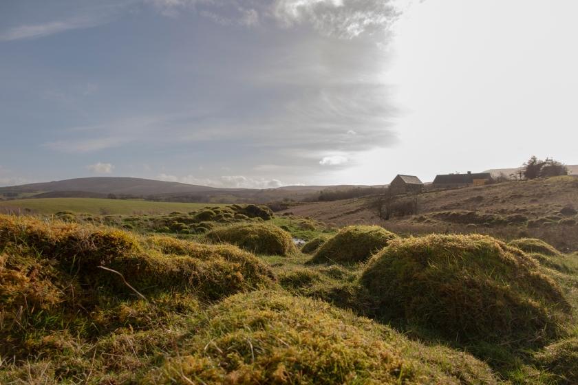 Sligo保育區