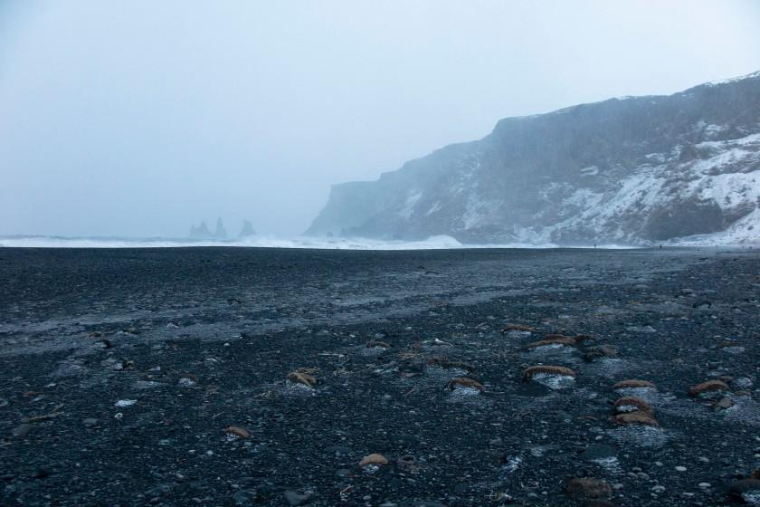 黑沙灘與海蝕柱