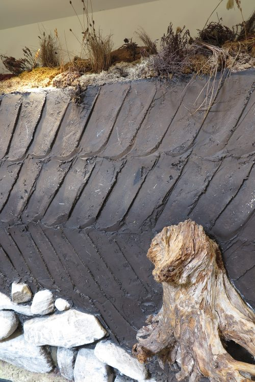 泥煤層橫切面,解釋了其作用 - 保存了地底的一切文物