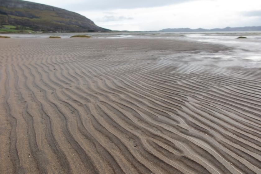 內灣沙灘上幼小的沙粒