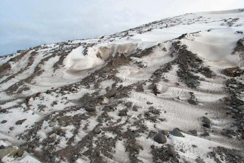 冰島沿岸小山丘